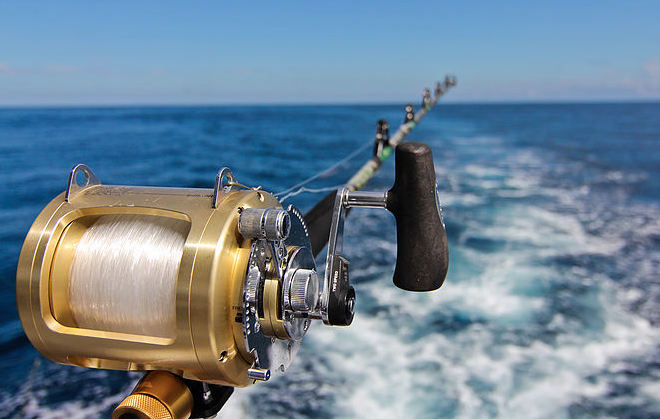 Tamarindo sports fishing