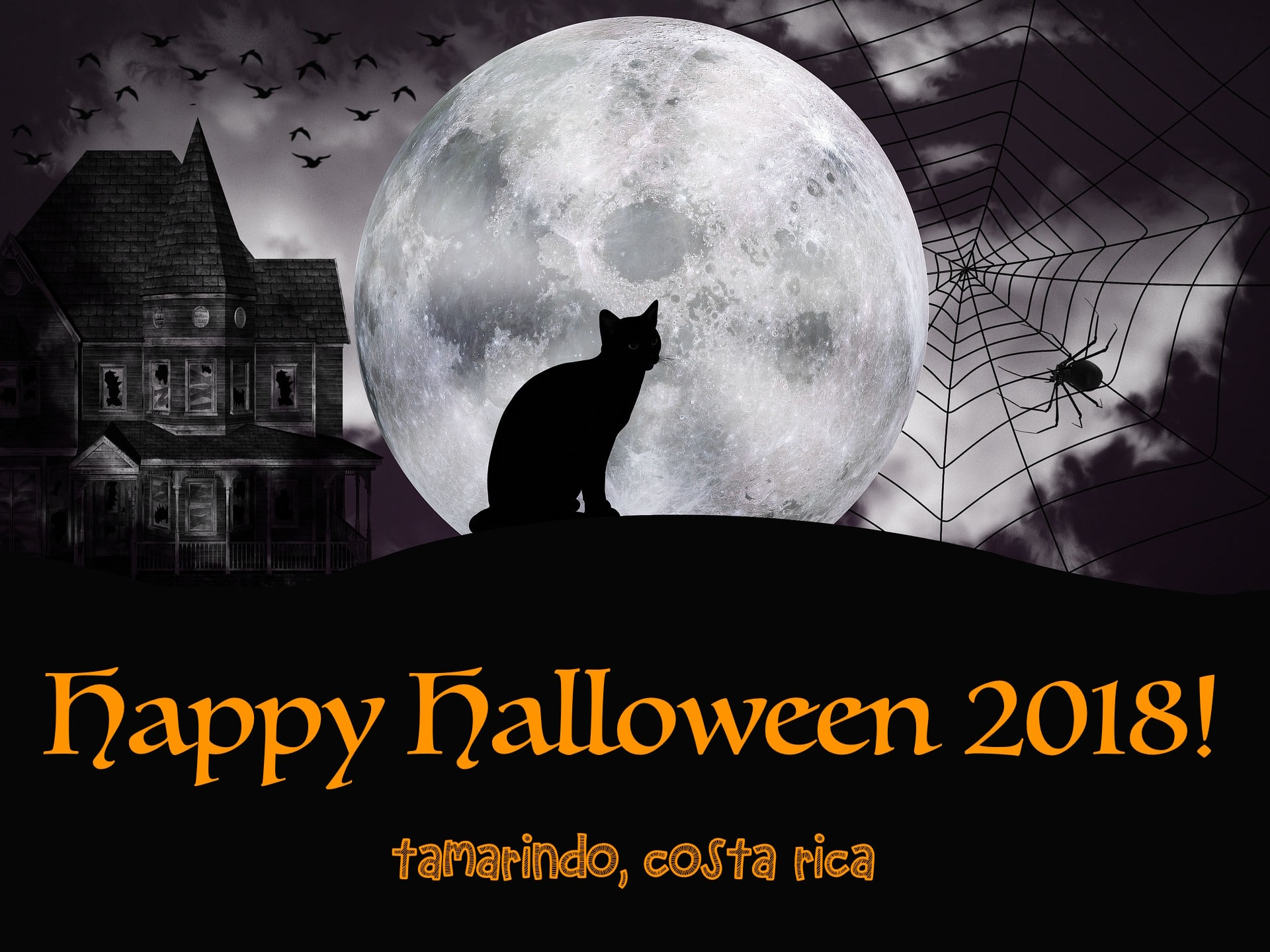 Halloween parties in Tamarindo, Costa Rica-min