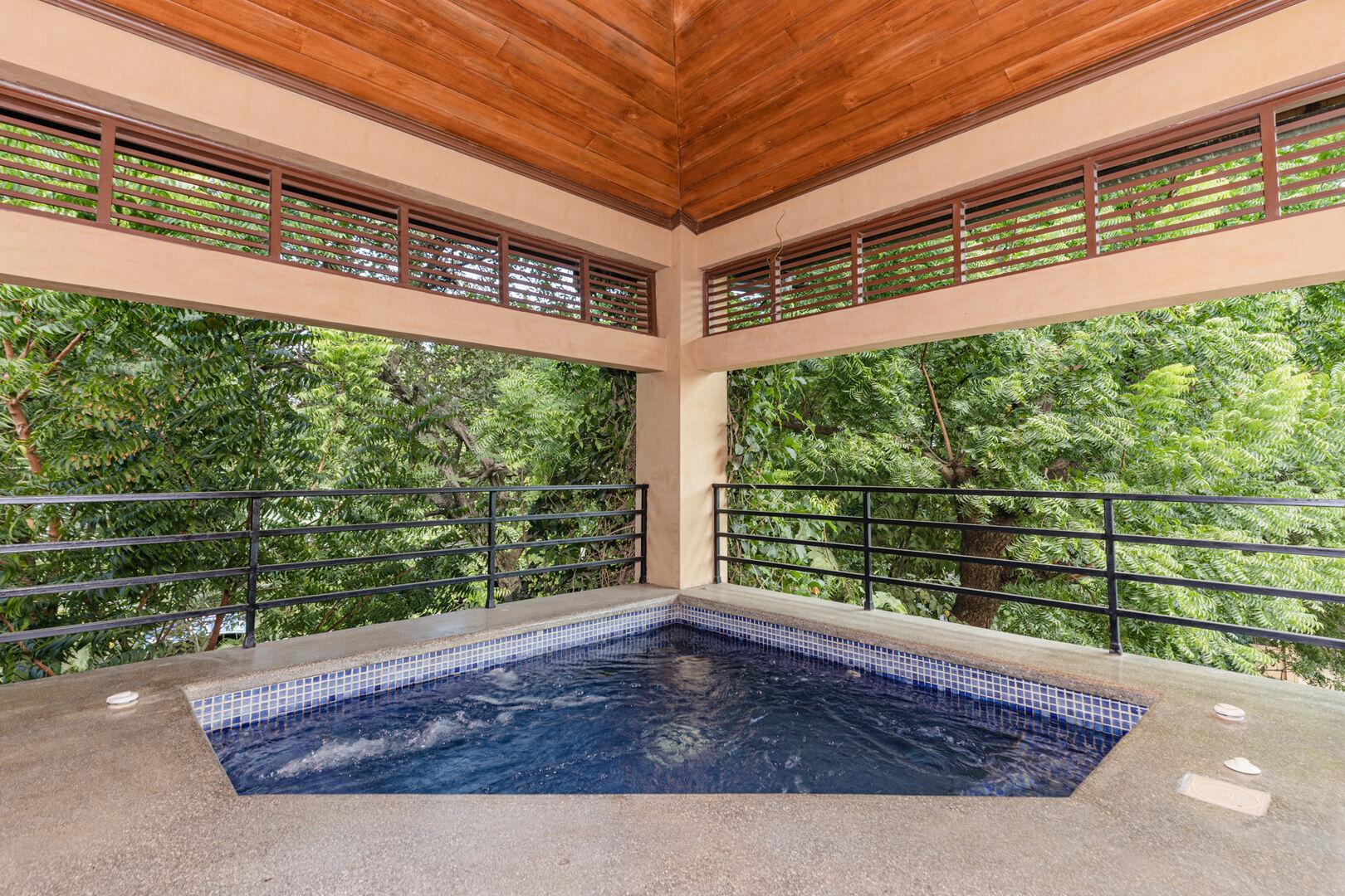 Ibis Condos hot tub spa